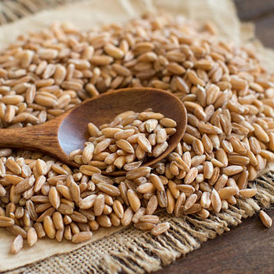 Ancient Grains: Benefits of Buckwheat
