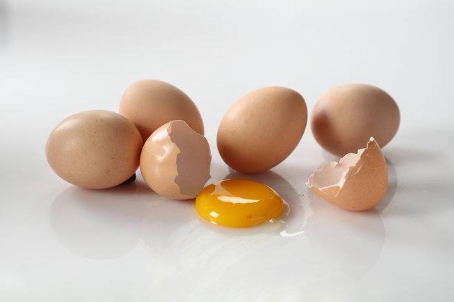 healthy eggs in philippines
